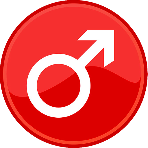 calitatea erecției