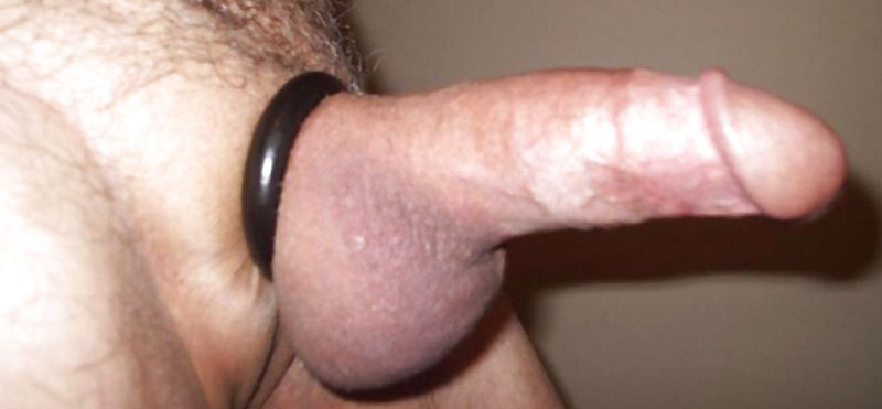 penis fără testicule)