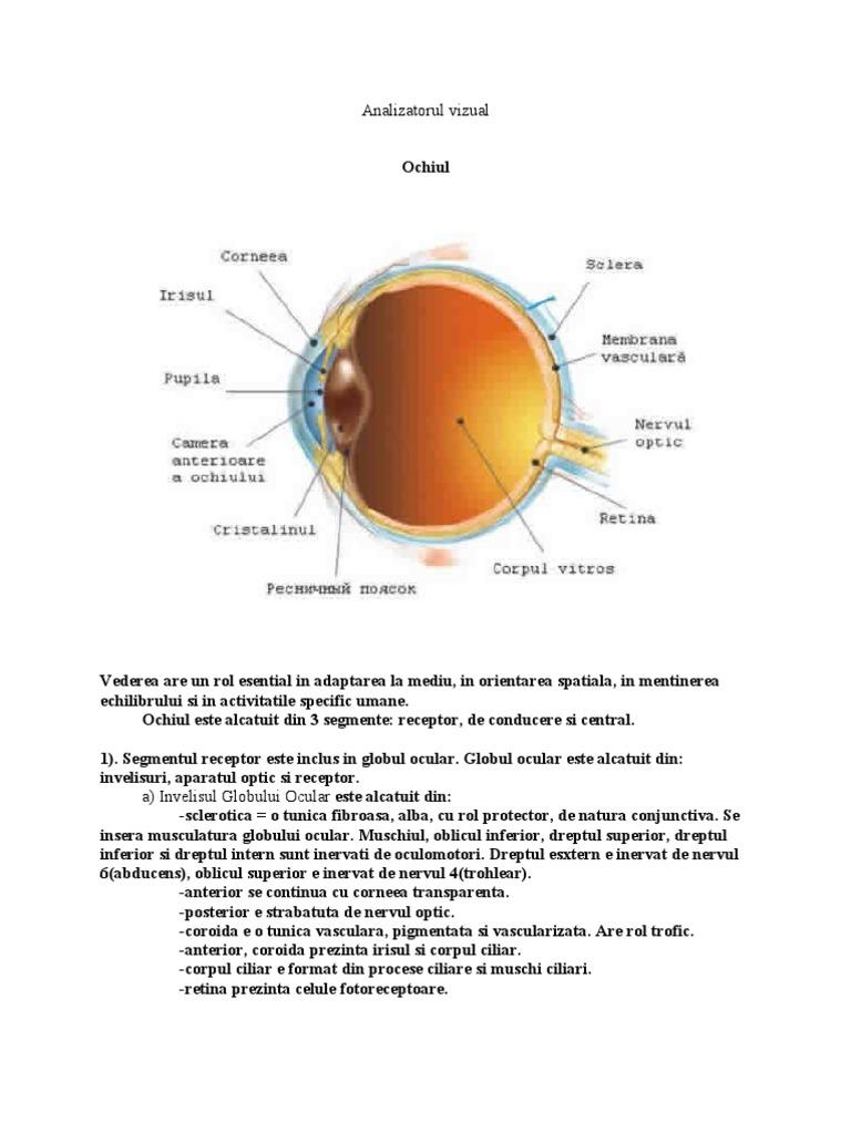 Penis pauza - cauze si terapie / boli   Medicină alternativă și metode de tratare a bolilor.