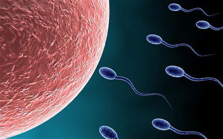 forum pentru extinderea penisului de ce am o erecție rapid