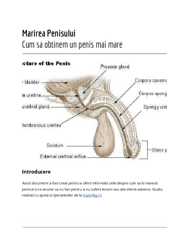 umflă penisul