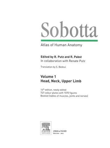 Durere și arsură în timpul urinării la bărbați: cauze și metode de luptă - Diagnostice