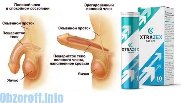 erecția mea se va slăbi)