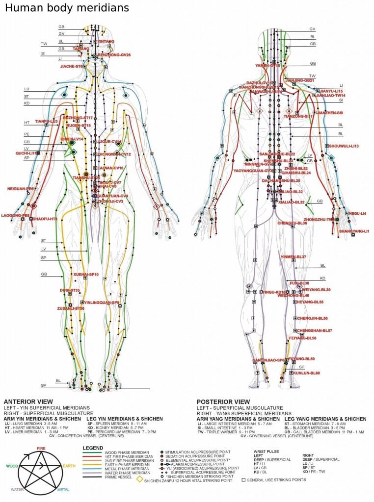 erecția punctelor corpului)