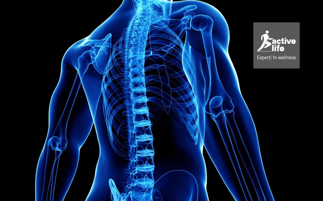 coloana vertebrală și erecție cum se identifică penisul la bărbați