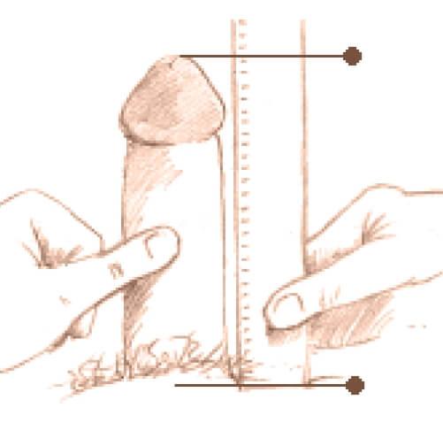 Penis Mic - Pozitii si Tehnici ce ofera iubitei orgasm GARANTAT!