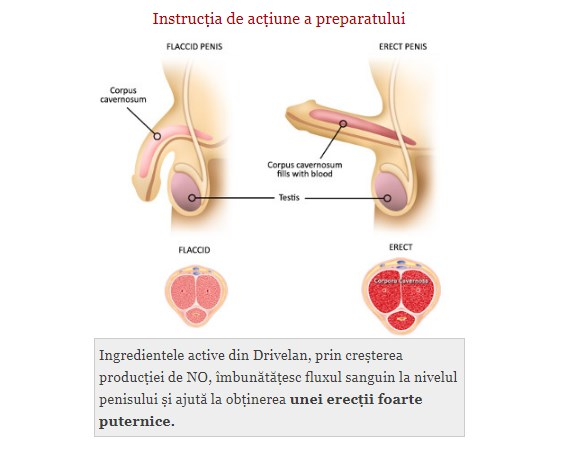 unge penisul cu cremă nu o erecție permanentă