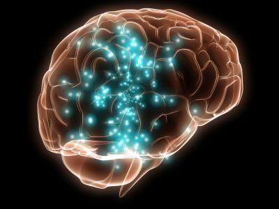 ce este responsabil pentru o erecție în creier