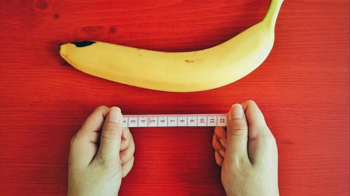 cum se măsoară lungimea unui penis