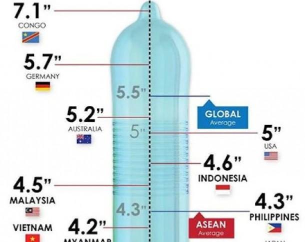 dimensiunea medie a penisului în Coreea)