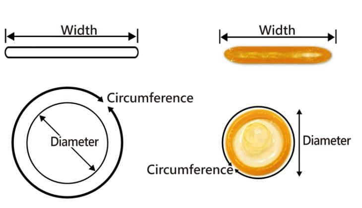 lungimea și circumferința penisului sunt normale)