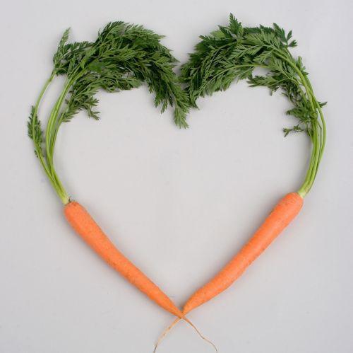 morcov pentru o erecție)