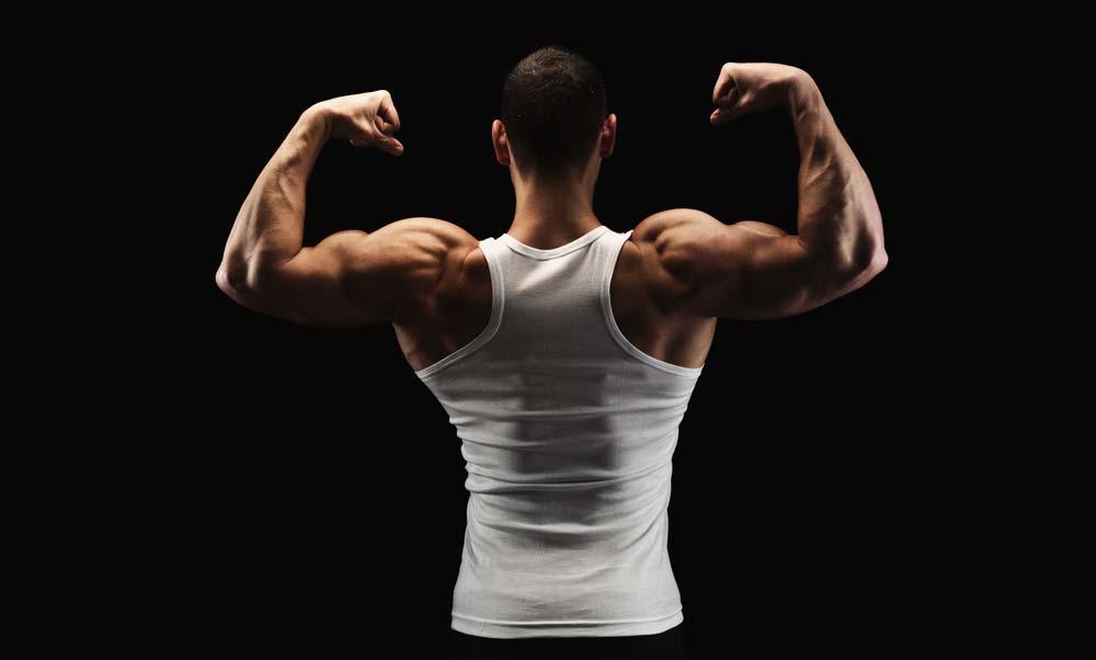 testosteronul afectează creșterea penisului