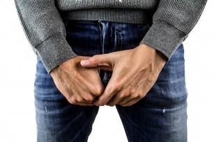 penisul este îndoit în timpul erecției)