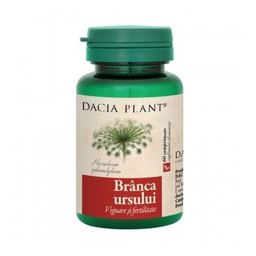 Cele mai bune plante care combat problemele sexuale masculine | bogdanbarabas.ro