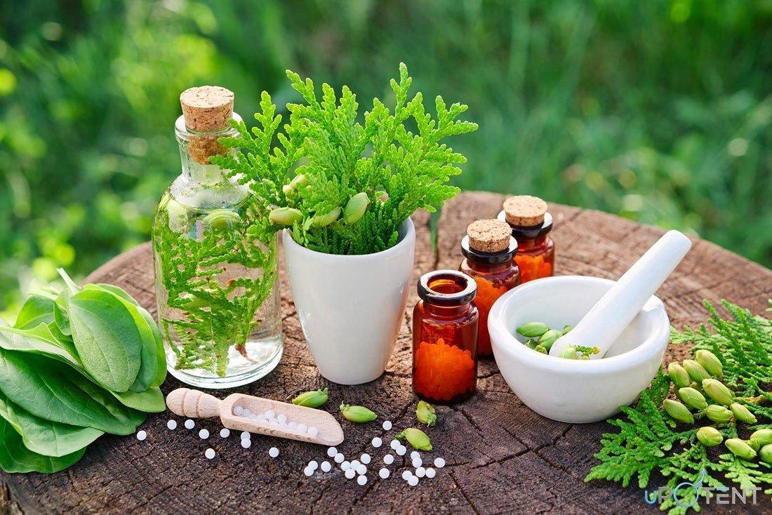 îmbunătățirea erecției cu remedii pe bază de plante)