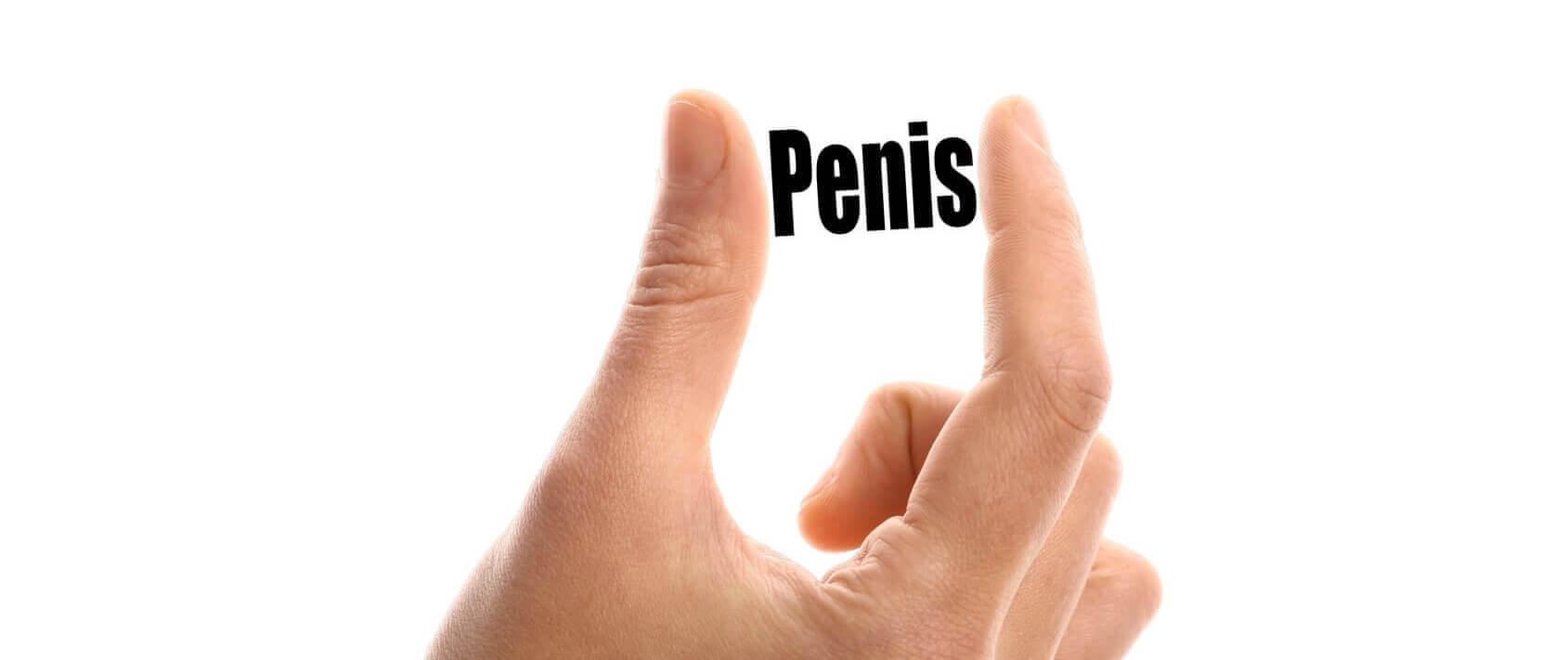 De multe ori am un penis